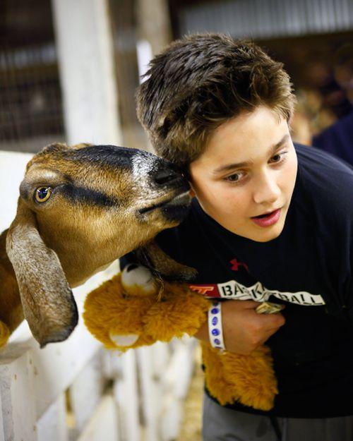 Caleb gets his goat