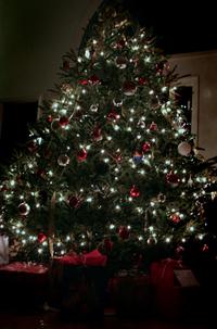 _1_blog_tree
