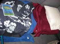 Floydfest_2008_and_jack_and_caleb_2