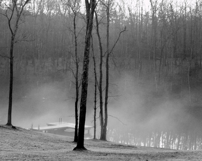 _fog_on_the_pond