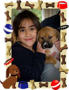 New_puppy_w_izzy_2
