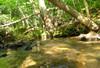_1_creek_side