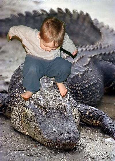 Ben_the_alligator_wrestler